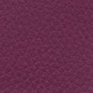 Allure Cranberry