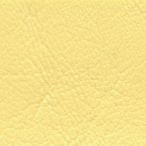 Windward Lemonade