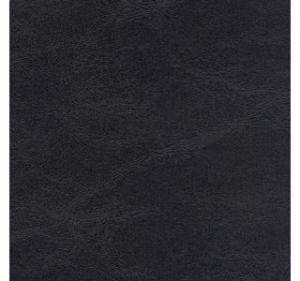 Tortuga Blackbeard