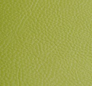 Amadeus Lime