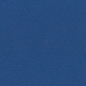 STAMOID LIGHT ROYAL BLUE