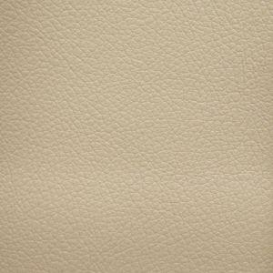 Autosoft Nissan Almond