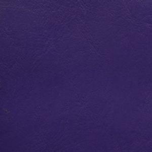 Coastal Purple Passion