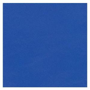 Tortuga Blue