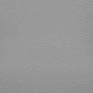 Autosoft Toyota Light Gray