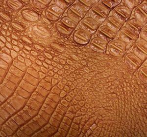 Croc Mandarin